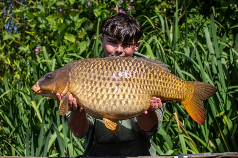 Tom Nixon -Taylor with a Ghost Common of 30-02