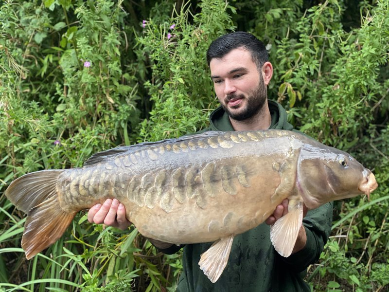 Alex Crouch with a classic looking Mirror of  31-03 Mirror. His fourth thirty of his visit!