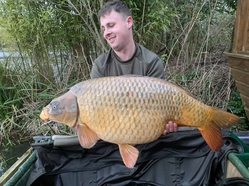 Callum Longland with his new PB. A stunning Ghost Common of 33-02 from Heron Lodge