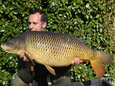 Danny Taylor with a dream start 38lb Common from Osprey Lodge