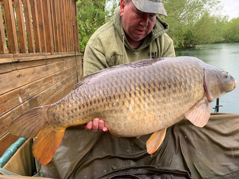 Gary Hutchins with the first of three fantastic Carp. A 38-08 Common from Osprey Lodge