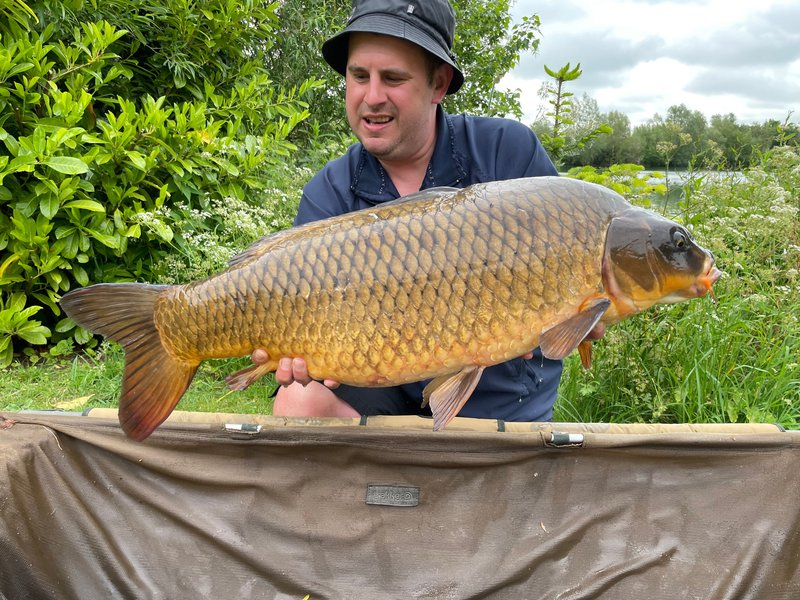 Matthew Blinston with the prettiest Carp of the week. A 21-08 Ghost Common Carp.