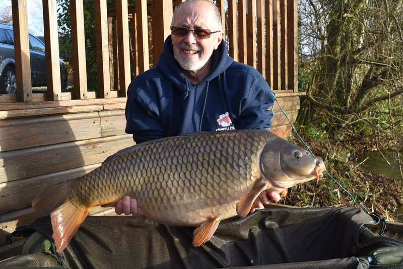 Ken O'Connor with his sixth Carp over 30lb from Cherry Lake. This time a stunning 31-00 Common from Heron Lodge..jpg