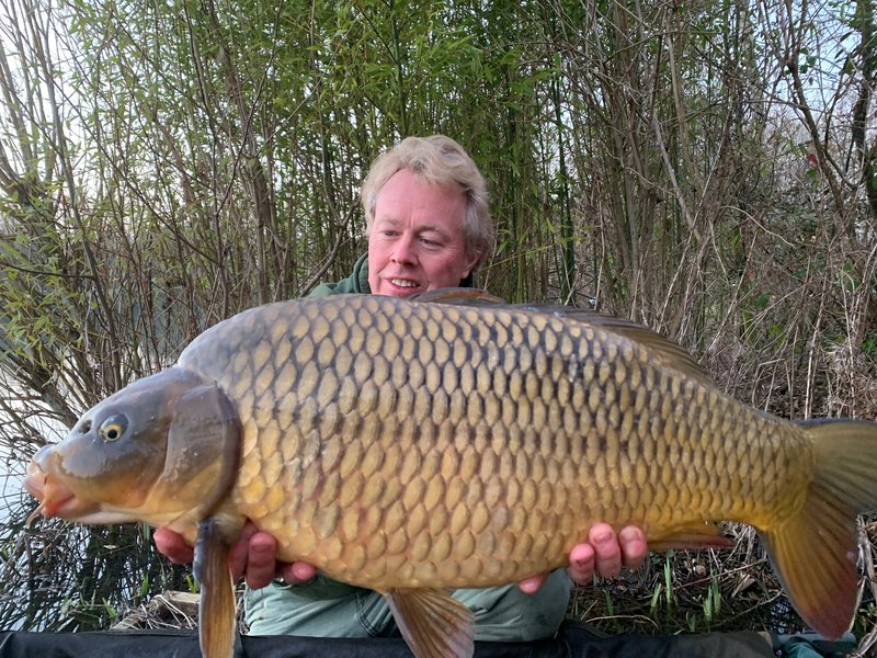 My favourite March Carp, a home-grown Ghost Common of 22-08