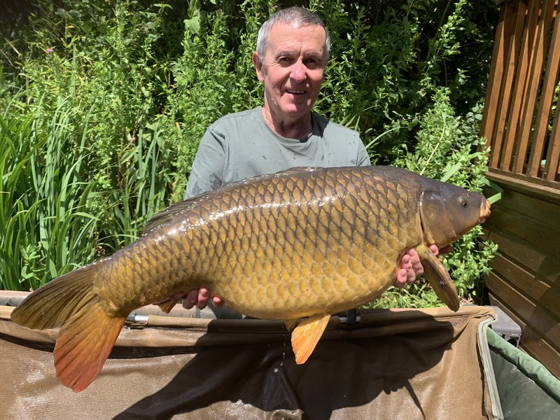 Michael Turner with his PB Common. A lovely looking Carp of 31-08
