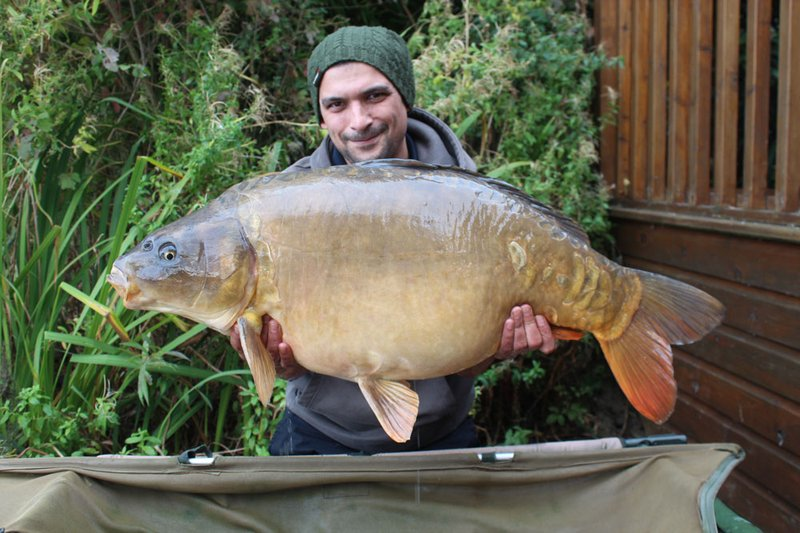Steve Shepherd with the new Cherry Lake record Ghost Carp. a stunner of 37-12
