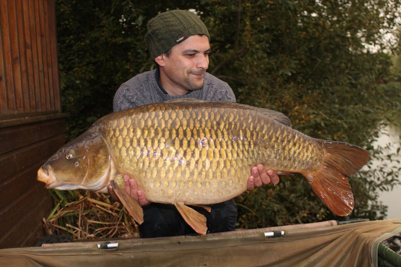 Steve Shepherd with the third thirty of his trip. A 33-04 Common.